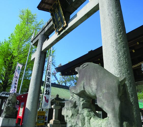 可爱动物出没日本神社!关西地区「动物御神签」特搜!